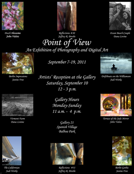 Point of View 2011